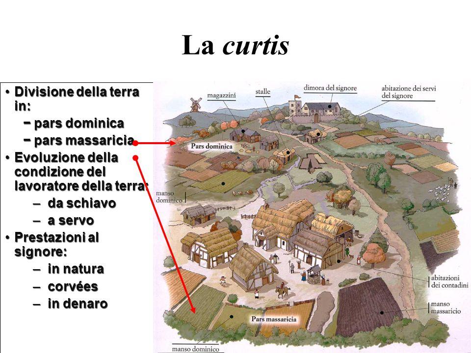 La curtis Divisione della terra in:Divisione della terra in: − pars dominica − pars dominica − pars massaricia − pars massaricia Evoluzione della cond