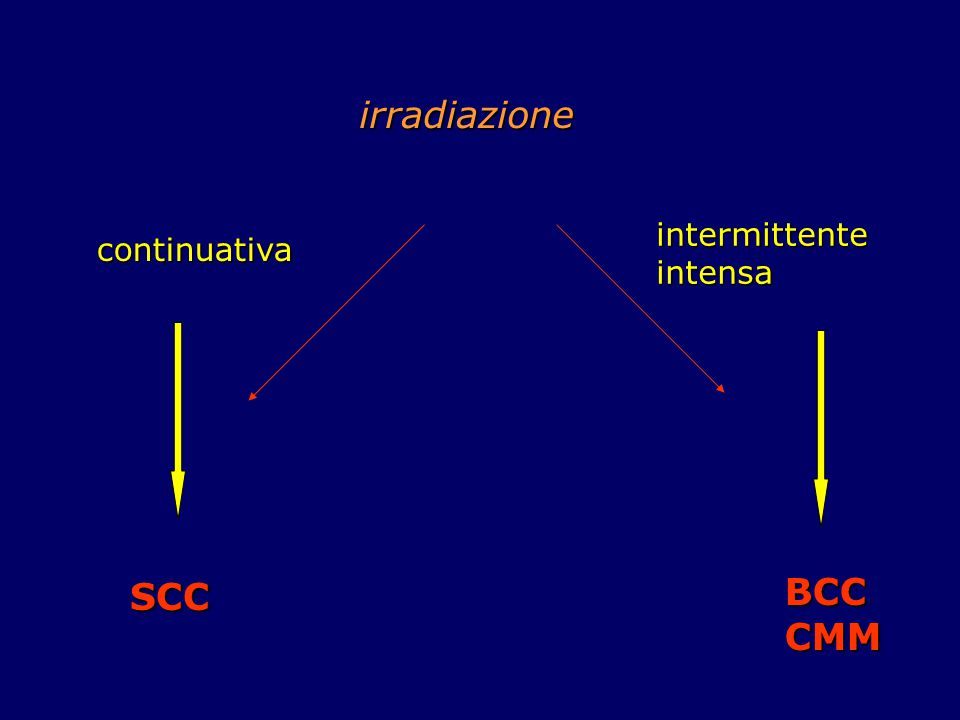 irradiazione continuativa intermittente intensa BCCCMM SCC