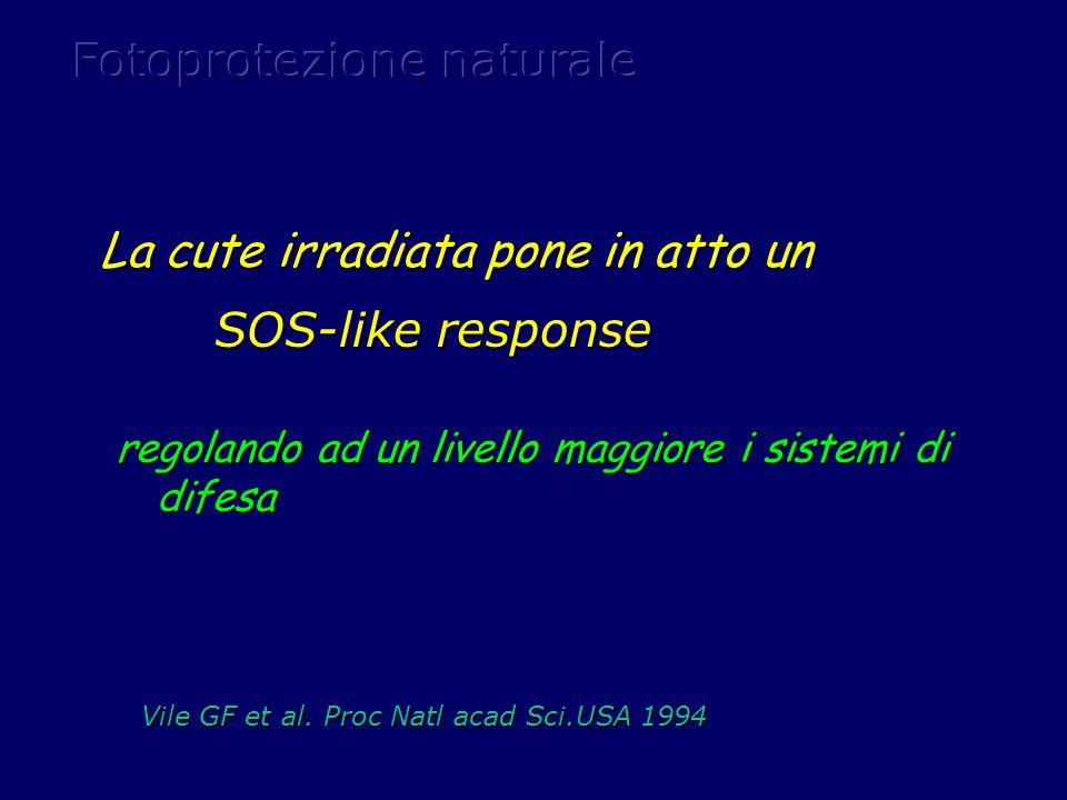 regolando ad un livello maggiore i sistemi di difesa La cute irradiata pone in atto un SOS-like response SOS-like response Vile GF et al. Proc Natl ac