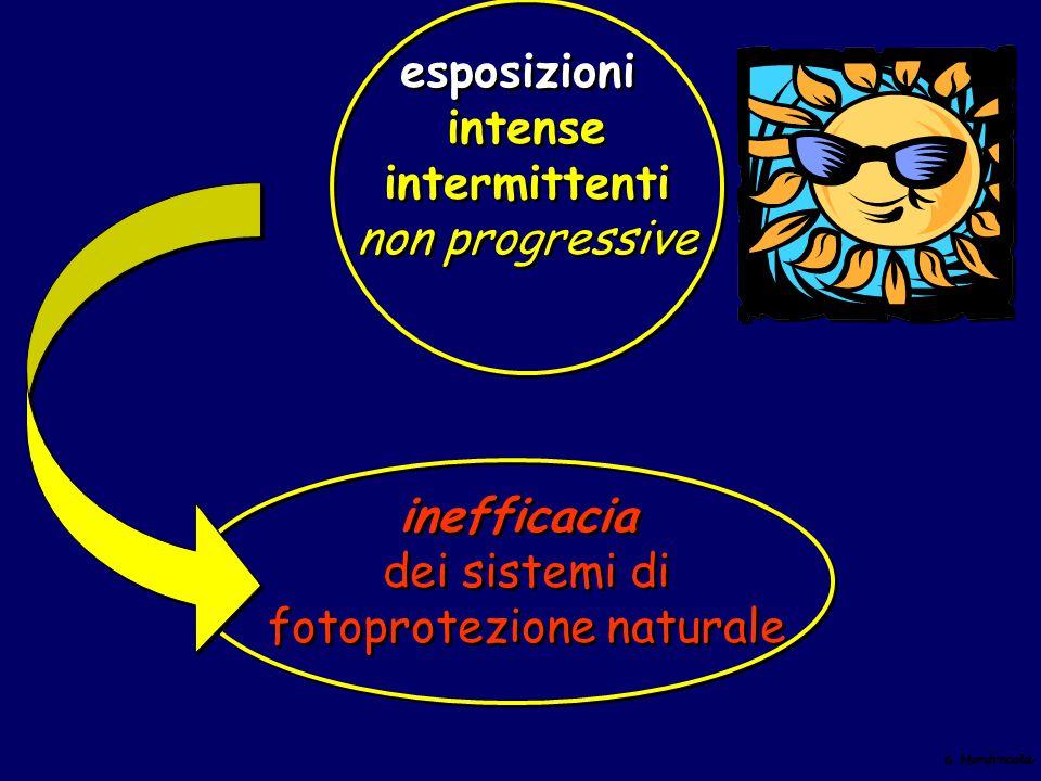 esposizioni intense intermittenti non progressive inefficacia dei sistemi di fotoprotezione naturale esposizioni intense intermittenti non progressive
