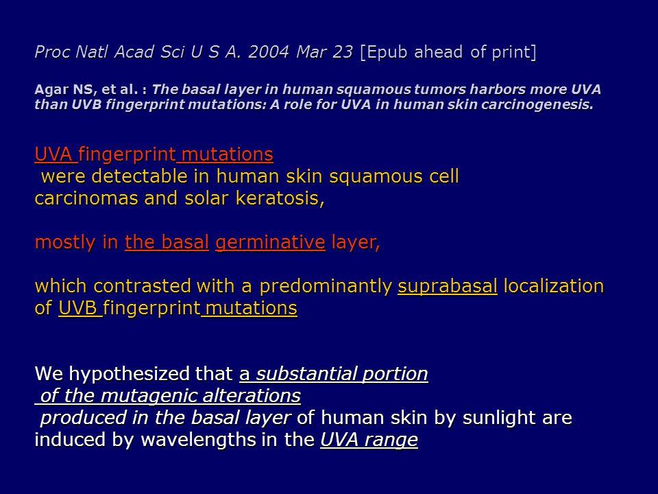 Proc Natl Acad Sci U S A. 2004 Mar 23 [Epub ahead of print] Proc Natl Acad Sci U S A. 2004 Mar 23 [Epub ahead of print] Agar NS, et al. : The basal la
