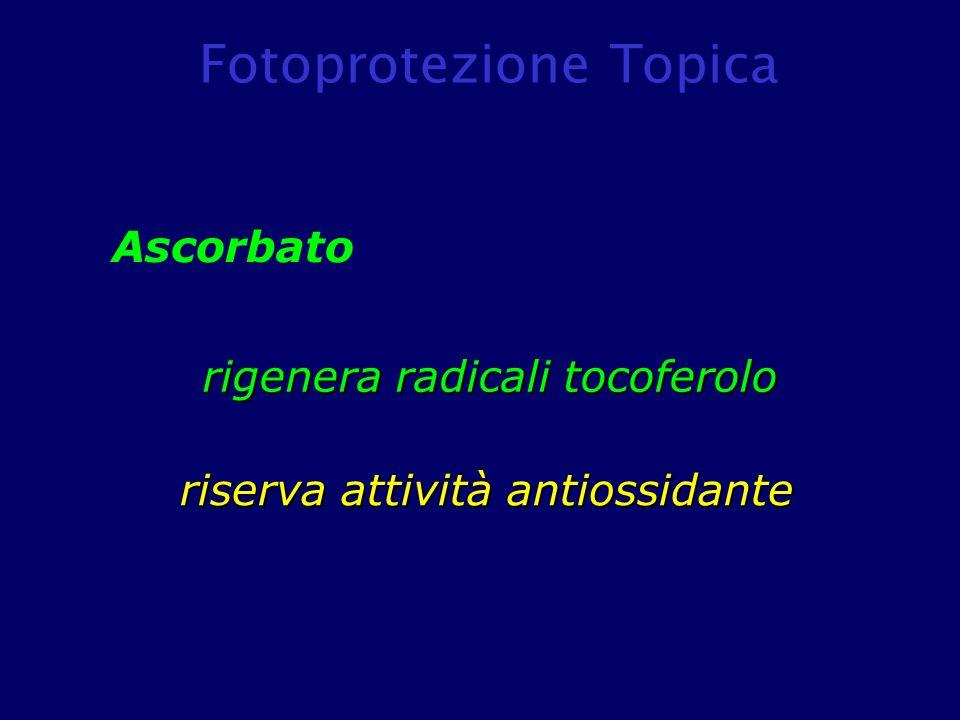 Ascorbato rigenera radicali tocoferolo riserva attività antiossidante Fotoprotezione Topica