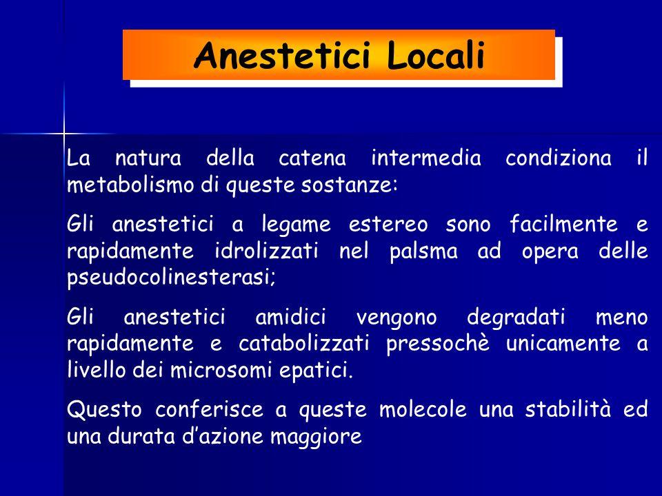 La natura della catena intermedia condiziona il metabolismo di queste sostanze: Gli anestetici a legame estereo sono facilmente e rapidamente idrolizz