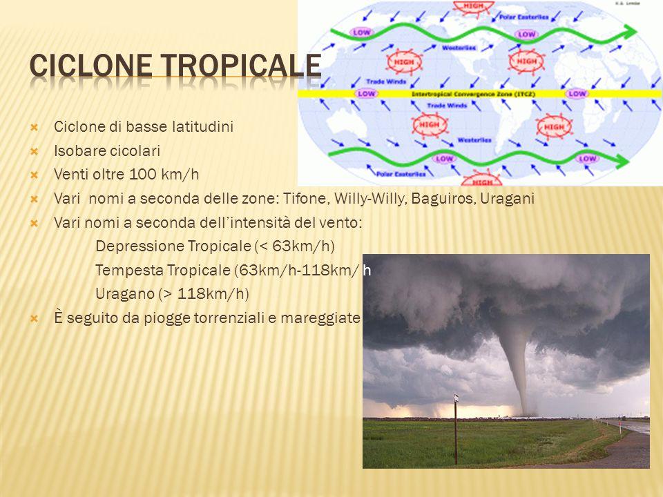  Ciclone di basse latitudini  Isobare cicolari  Venti oltre 100 km/h  Vari nomi a seconda delle zone: Tifone, Willy-Willy, Baguiros, Uragani  Vari nomi a seconda dell'intensità del vento: Depressione Tropicale (< 63km/h) Tempesta Tropicale (63km/h-118km/ h Uragano (> 118km/h)  È seguito da piogge torrenziali e mareggiate