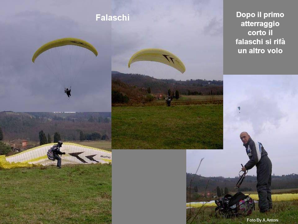 Falaschi Dopo il primo atterraggio corto il falaschi si rifà un altro volo Foto By A.Antoni