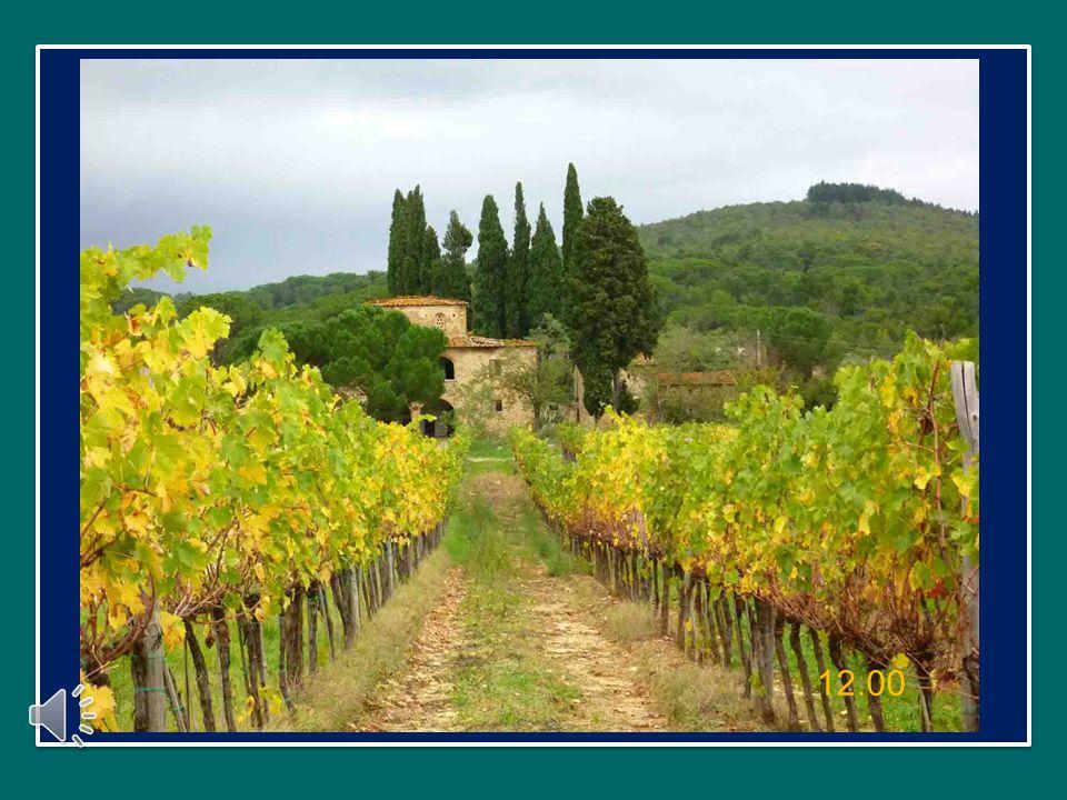 Ringrazio il popolo di Assisi per la calda accoglienza: grazie tante!