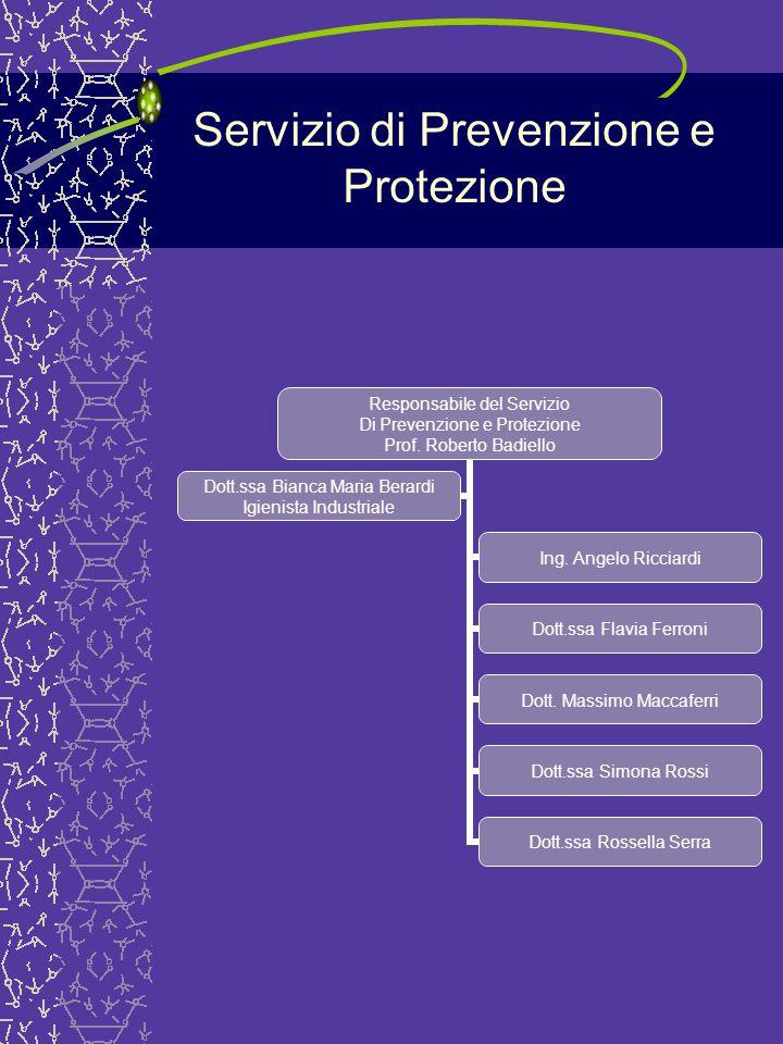 Servizio di Prevenzione e Protezione Responsabile del Servizio Di Prevenzione e Protezione Prof. Roberto Badiello Ing. Angelo Ricciardi Dott.ssa Flavi