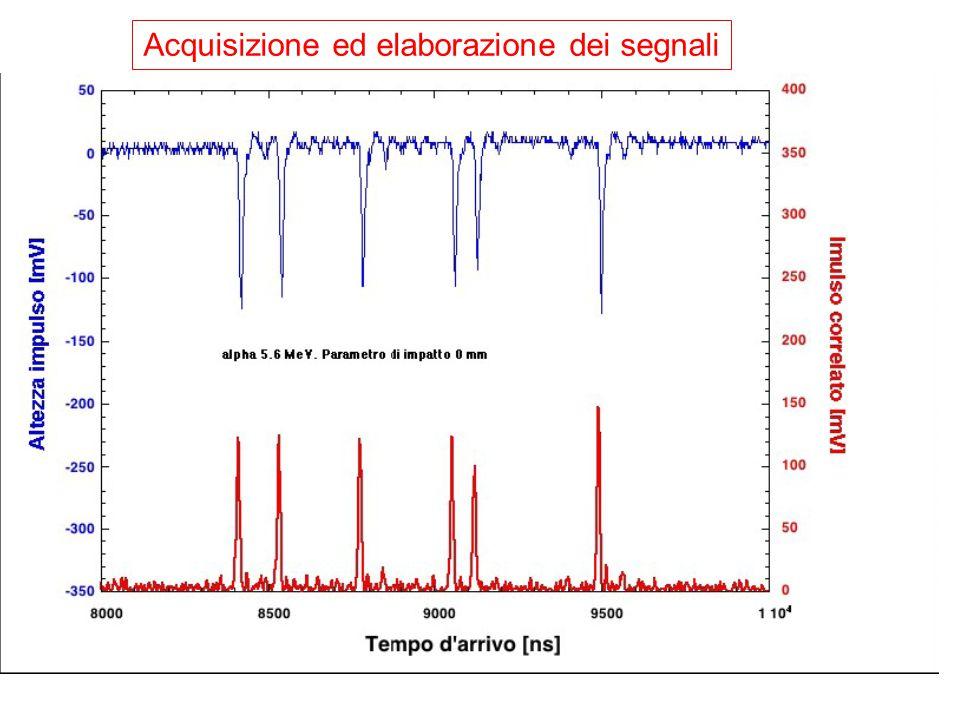 Acquisizione ed elaborazione dei segnali