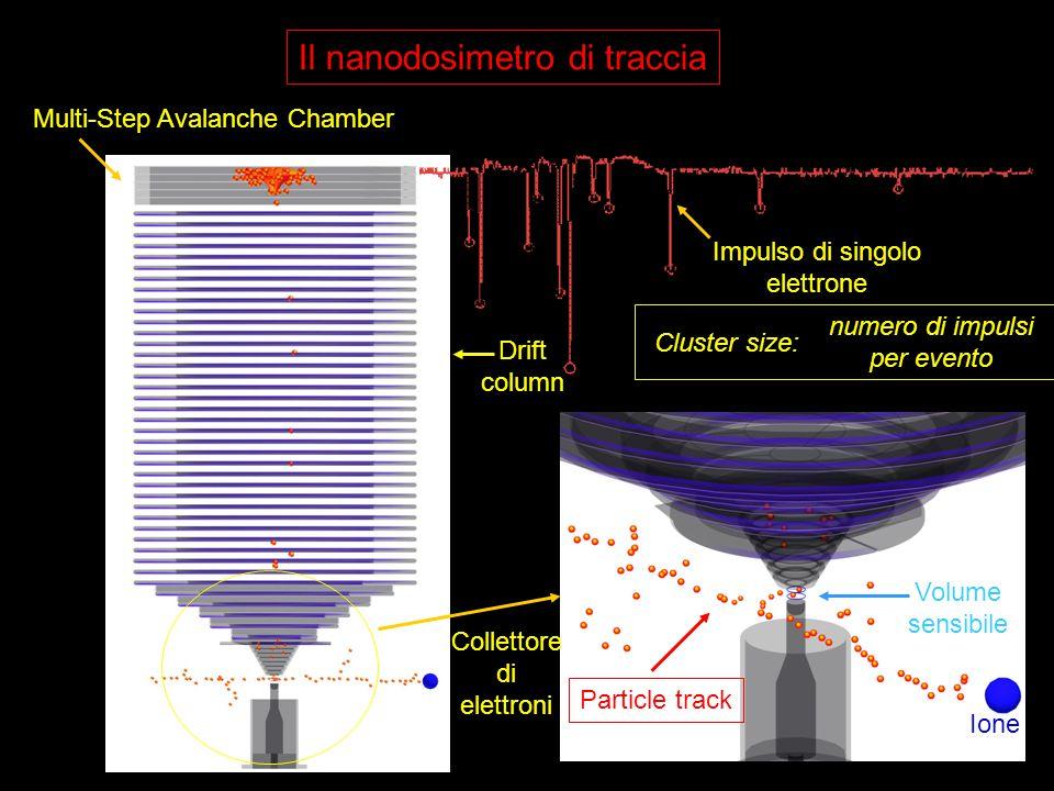 Particle track Collettore di elettroni Drift column Il nanodosimetro di traccia Multi-Step Avalanche Chamber Impulso di singolo elettrone Ione Volume