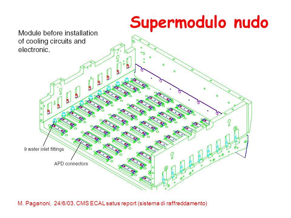 M. Paganoni, 24/6/03, CMS ECAL satus report (sistema di raffreddamento) Supermodulo nudo