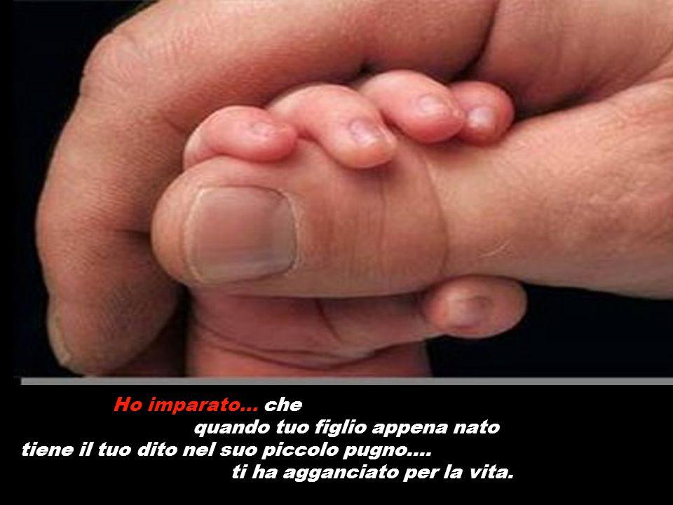 Ho imparato... che quando tuo figlio appena nato tiene il tuo dito nel suo piccolo pugno.... ti ha agganciato per la vita.
