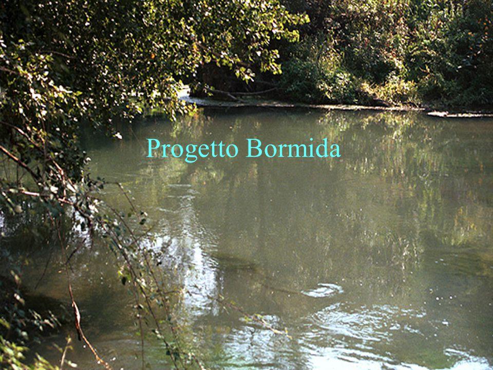 R. Soncini Sessa, MODSS, 2004 2 Progetto Bormida