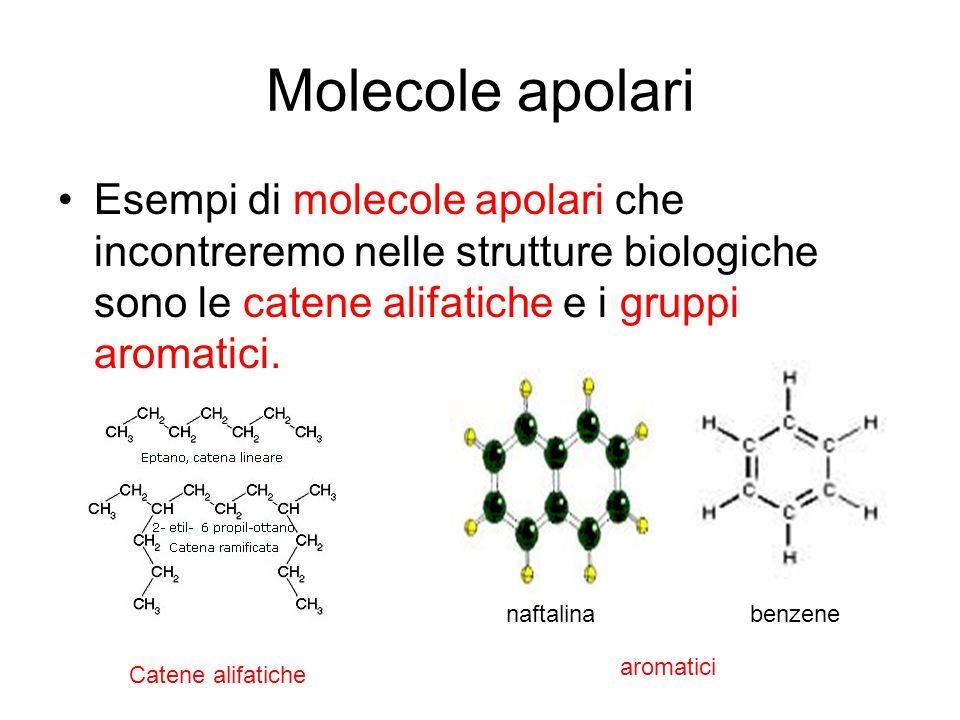 Molecole apolari Esempi di molecole apolari che incontreremo nelle strutture biologiche sono le catene alifatiche e i gruppi aromatici. naftalina benz