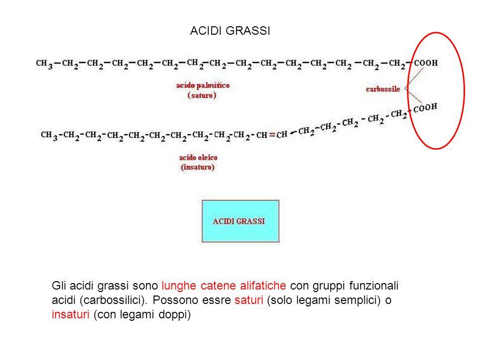 ACIDI GRASSI Gli acidi grassi sono lunghe catene alifatiche con gruppi funzionali acidi (carbossilici). Possono essre saturi (solo legami semplici) o
