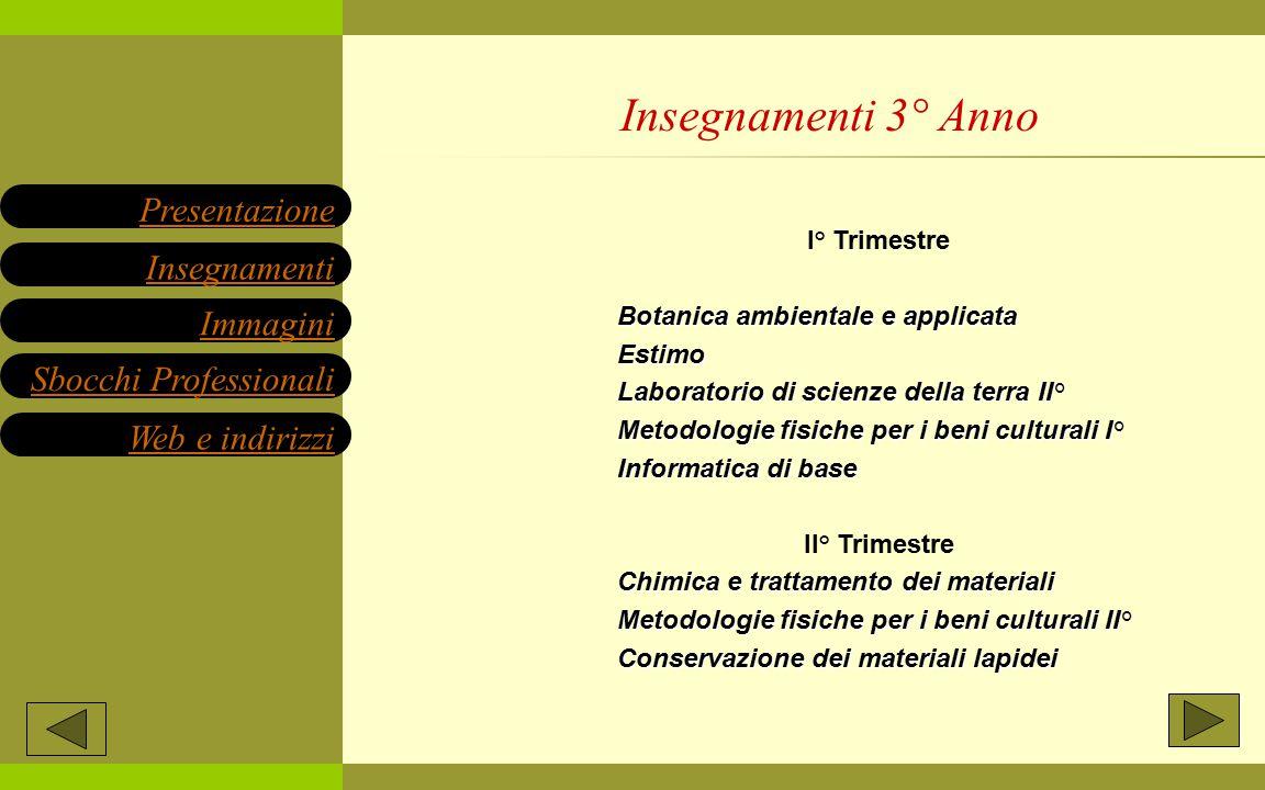 I° Trimestre Botanica ambientale e applicata Estimo Laboratorio di scienze della terra II° Metodologie fisiche per i beni culturali I° Informatica di