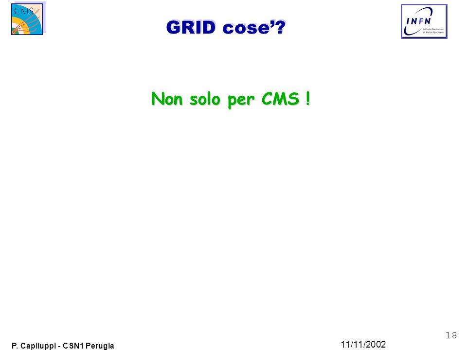 18 P. Capiluppi - CSN1 Perugia 11/11/2002 GRID cose' Non solo per CMS !