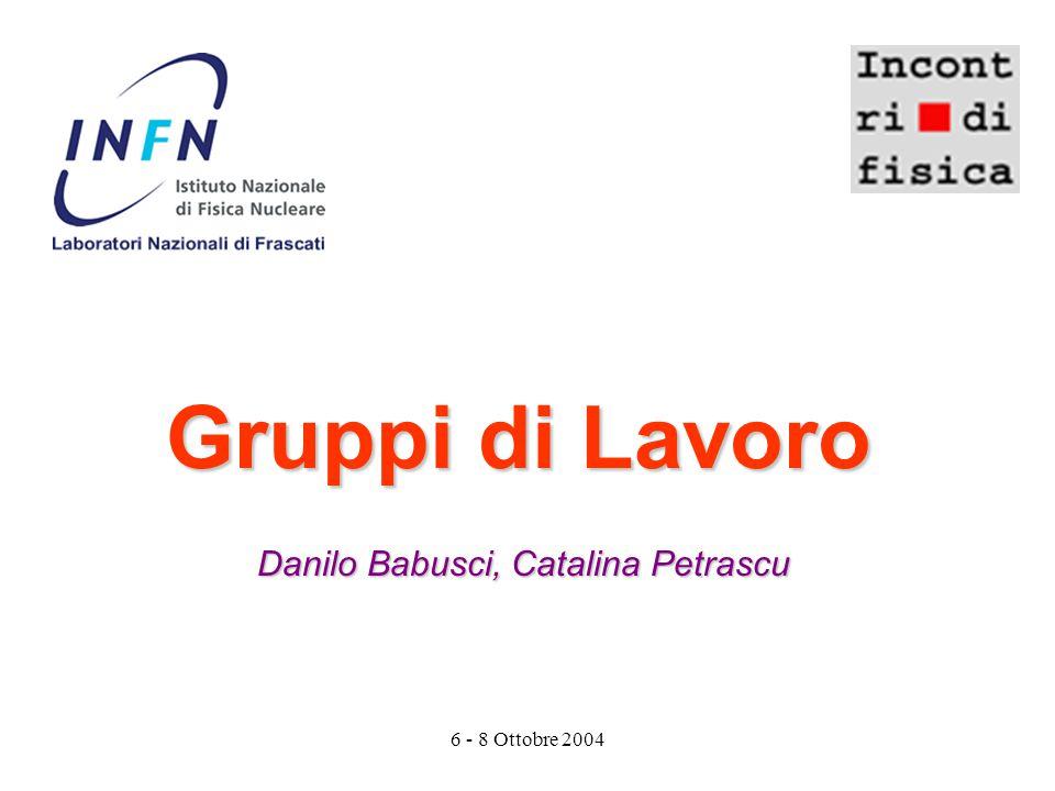 6 - 8 Ottobre 2004 Gruppi di Lavoro Danilo Babusci, Catalina Petrascu