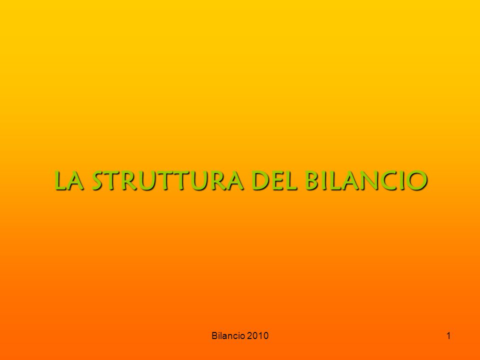 Bilancio 20101 LA STRUTTURA DEL BILANCIO