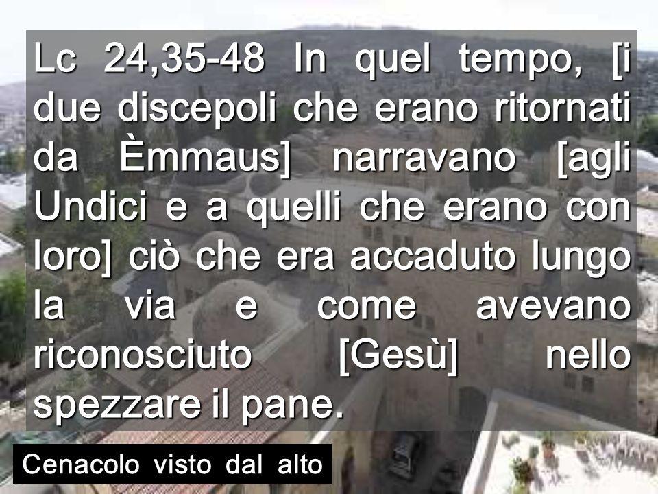 Lc 24,35-48 In quel tempo, [i due discepoli che erano ritornati da Èmmaus] narravano [agli Undici e a quelli che erano con loro] ciò che era accaduto