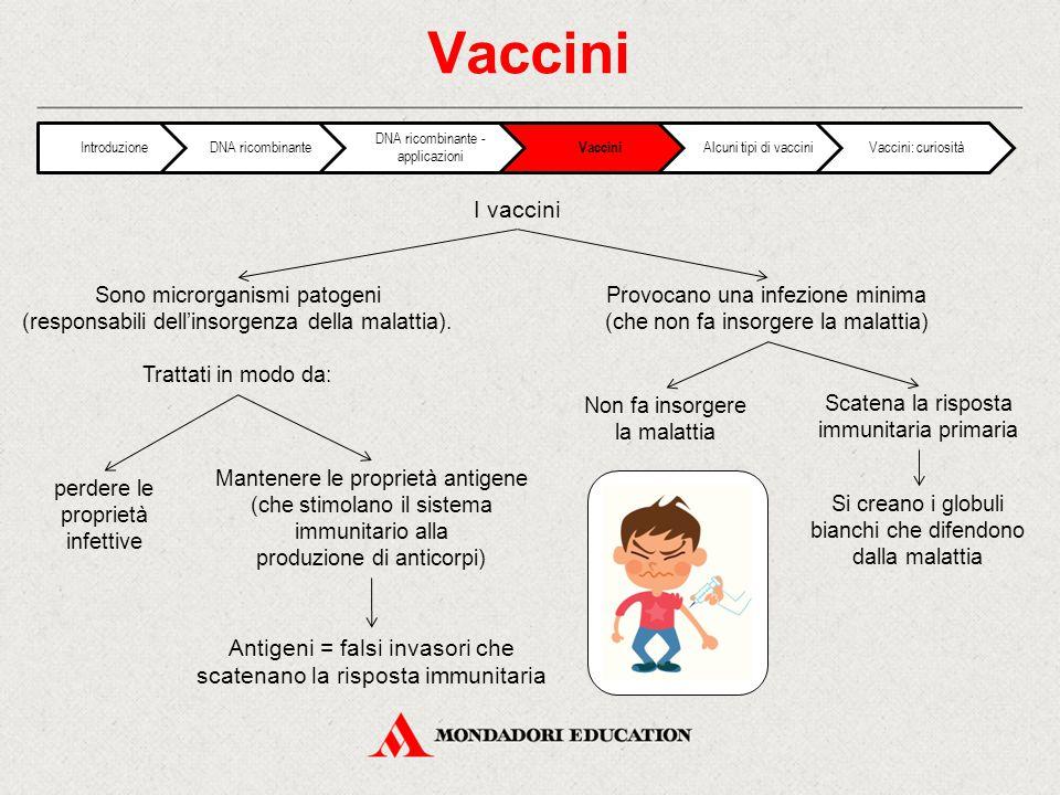 Vaccini I vaccini Sono microrganismi patogeni (responsabili dell'insorgenza della malattia).