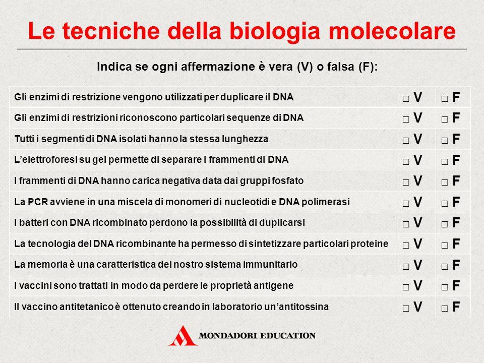 Indica se ogni affermazione è vera (V) o falsa (F): Gli enzimi di restrizione vengono utilizzati per duplicare il DNA □ V□ F Gli enzimi di restrizioni riconoscono particolari sequenze di DNA □ V□ F Tutti i segmenti di DNA isolati hanno la stessa lunghezza □ V□ F L'elettroforesi su gel permette di separare i frammenti di DNA □ V□ F I frammenti di DNA hanno carica negativa data dai gruppi fosfato □ V□ F La PCR avviene in una miscela di monomeri di nucleotidi e DNA polimerasi □ V□ F I batteri con DNA ricombinato perdono la possibilità di duplicarsi □ V□ F La tecnologia del DNA ricombinante ha permesso di sintetizzare particolari proteine □ V□ F La memoria è una caratteristica del nostro sistema immunitario □ V□ F I vaccini sono trattati in modo da perdere le proprietà antigene □ V□ F Il vaccino antitetanico è ottenuto creando in laboratorio un'antitossina □ V□ F Le tecniche della biologia molecolare