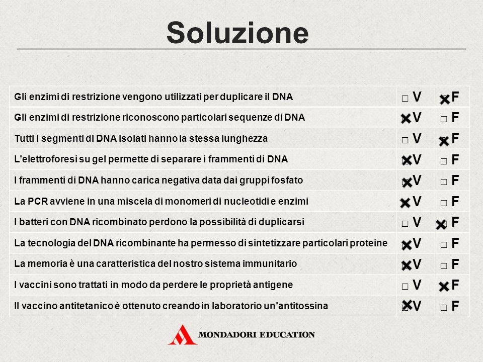 Soluzione Gli enzimi di restrizione vengono utilizzati per duplicare il DNA □ V□ F Gli enzimi di restrizione riconoscono particolari sequenze di DNA □ V□ F Tutti i segmenti di DNA isolati hanno la stessa lunghezza □ V□ F L'elettroforesi su gel permette di separare i frammenti di DNA □ V□ F I frammenti di DNA hanno carica negativa data dai gruppi fosfato □ V□ F La PCR avviene in una miscela di monomeri di nucleotidi e enzimi □ V□ F I batteri con DNA ricombinato perdono la possibilità di duplicarsi □ V□ F La tecnologia del DNA ricombinante ha permesso di sintetizzare particolari proteine □ V□ F La memoria è una caratteristica del nostro sistema immunitario □ V□ F I vaccini sono trattati in modo da perdere le proprietà antigene □ V□ F Il vaccino antitetanico è ottenuto creando in laboratorio un'antitossina □ V□ F