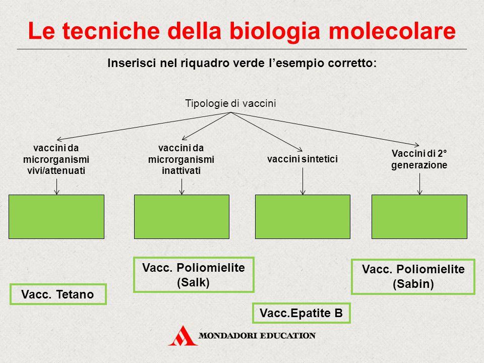 Inserisci nel riquadro verde l'esempio corretto: Tipologie di vaccini Vaccini di 2° generazione vaccini sintetici vaccini da microrganismi vivi/attenuati vaccini da microrganismi inattivati Vacc.