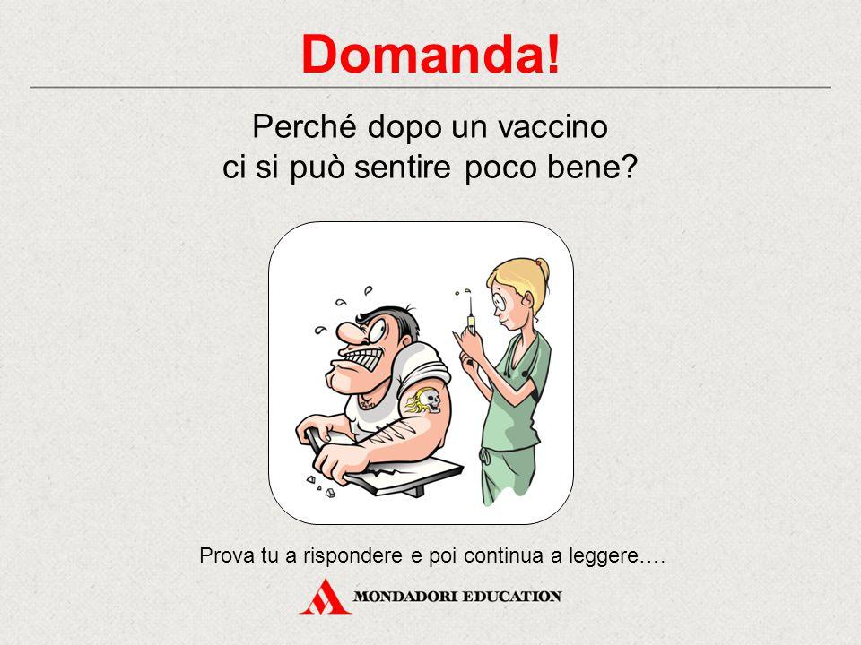 Domanda! Perché dopo un vaccino ci si può sentire poco bene? Prova tu a rispondere e poi continua a leggere….