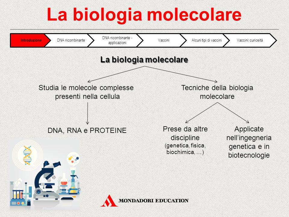 La biologia molecolare Introduzione DNA ricombinante DNA ricombinante - applicazioni VacciniAlcuni tipi di vacciniVaccini: curiosità Studia le molecole complesse presenti nella cellula Tecniche della biologia molecolare DNA, RNA e PROTEINE Prese da altre discipline (genetica, fisica, biochimica, …) Applicate nell'ingegneria genetica e in biotecnologie