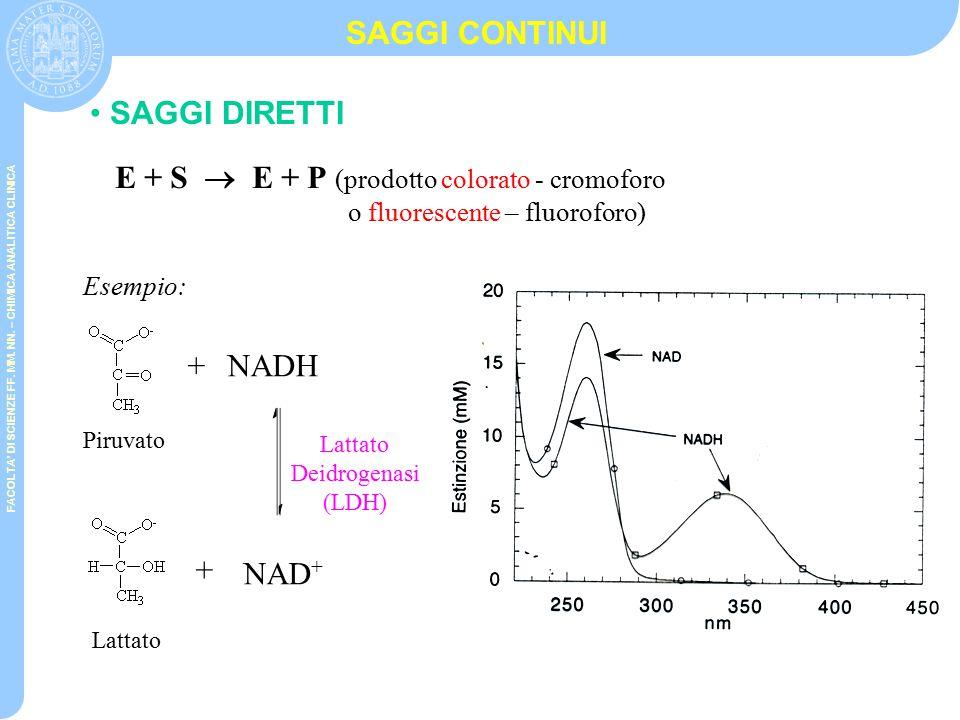 FACOLTA' DI SCIENZE FF. MM. NN. – CHIMICA ANALITICA CLINICA DETERMINAZIONE ATIVITA' ENZIMATICA E= (  mol di substrato/V  t)=  c'/  t E=(  A/  l