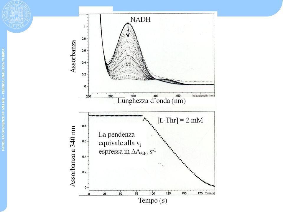 FACOLTA' DI SCIENZE FF. MM. NN. – CHIMICA ANALITICA CLINICA SAGGI ACCOPPIATI E 1 + S  E 1 + P (prodotto non colorato o fluorescente) E 2 + P  E 2 +