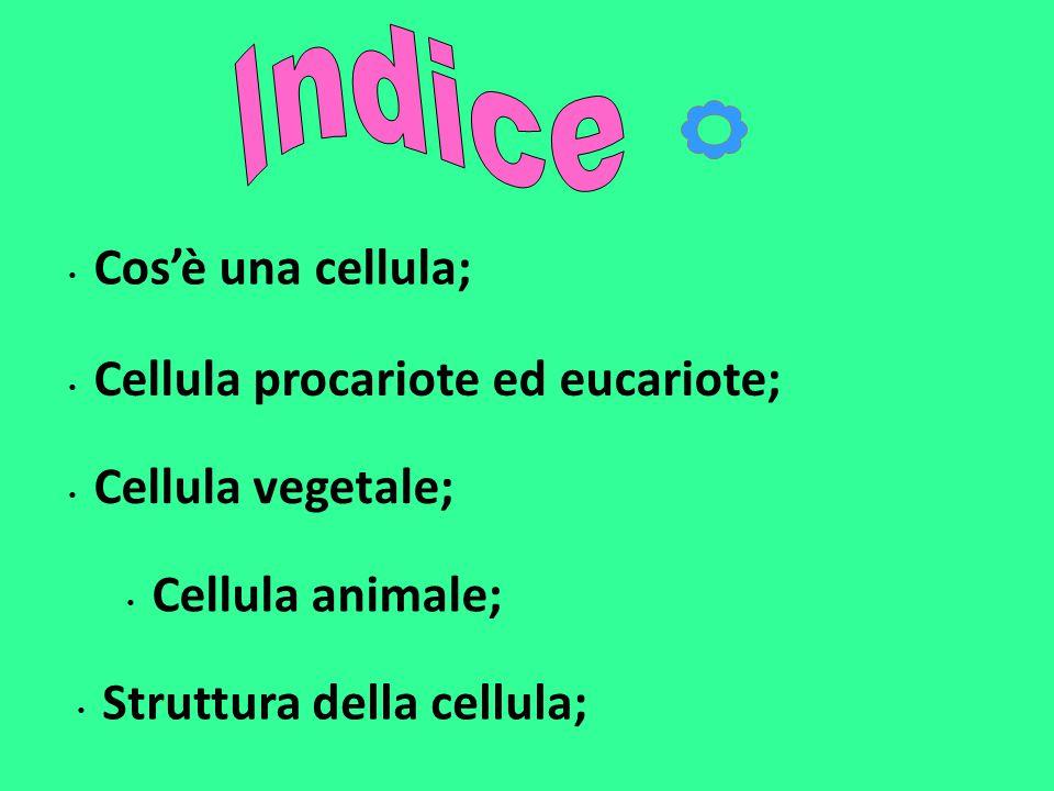 Cos'è una cellula; Cellula procariote ed eucariote; Cellula vegetale; Cellula animale; Struttura della cellula;