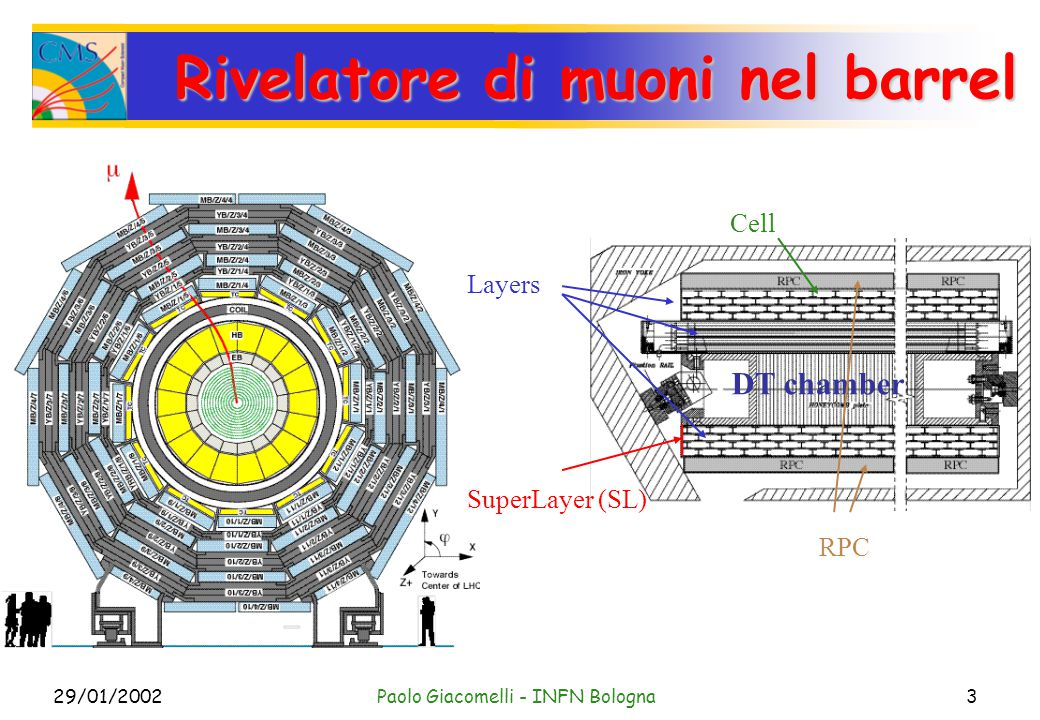 29/01/2002Paolo Giacomelli - INFN Bologna3 Rivelatore di muoni nel barrel DT chamber SuperLayer (SL) Layers Cell RPC