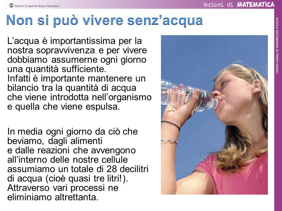 L'acqua è importantissima per la nostra sopravvivenza e per vivere dobbiamo assumerne ogni giorno una quantità sufficiente. Infatti è importante mante