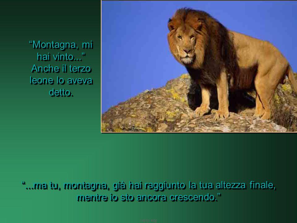 Ria slides Il primo leone aveva detto: Montagna, mi hai vinto! Il secondo leone aveva detto: Montagna, mi hai vinto!