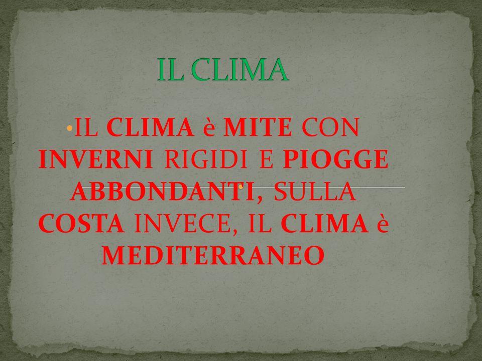 IL CLIMA è MITE CON INVERNI RIGIDI E PIOGGE ABBONDANTI, SULLA COSTA INVECE, IL CLIMA è MEDITERRANEO