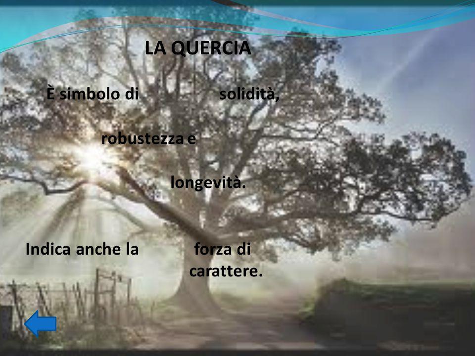 LA STELLA Appariva nelle antiche rappresentazioni dell'Italia unita, dove splendeva sulla fronte di una fanciulla, rappresentante la nazione stessa.