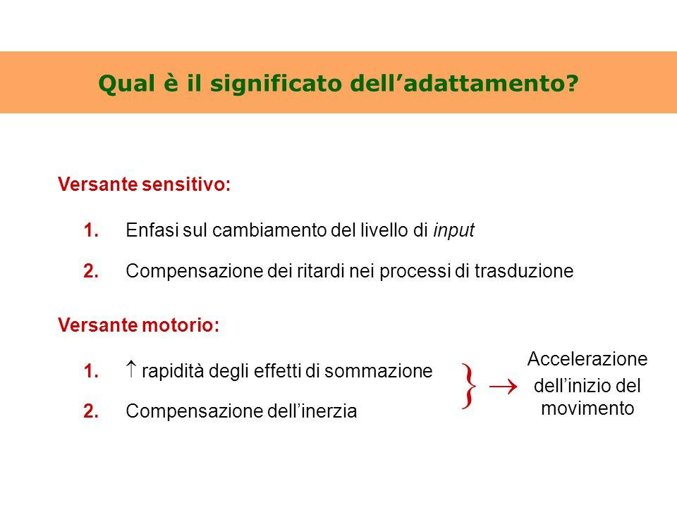 Qual è il significato dell'adattamento? Versante sensitivo: 1.Enfasi sul cambiamento del livello di input 2.Compensazione dei ritardi nei processi di
