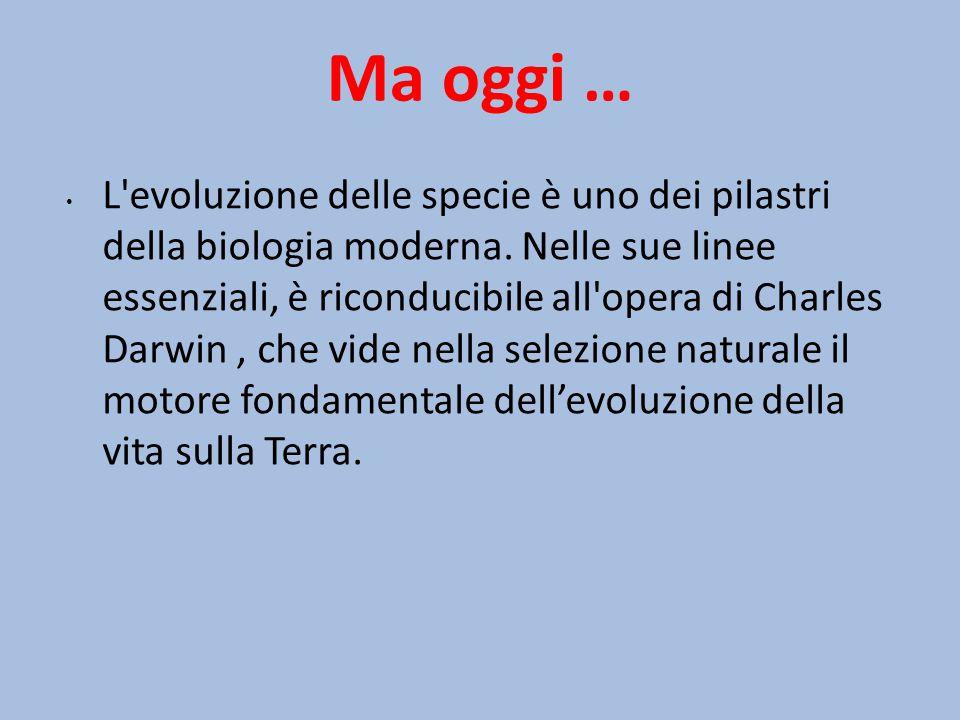 Ma oggi … L'evoluzione delle specie è uno dei pilastri della biologia moderna. Nelle sue linee essenziali, è riconducibile all'opera di Charles Darwin