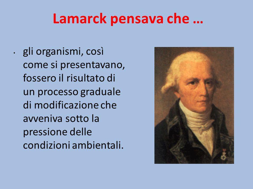 Lamarck pensava che … gli organismi, così come si presentavano, fossero il risultato di un processo graduale di modificazione che avveniva sotto la pr