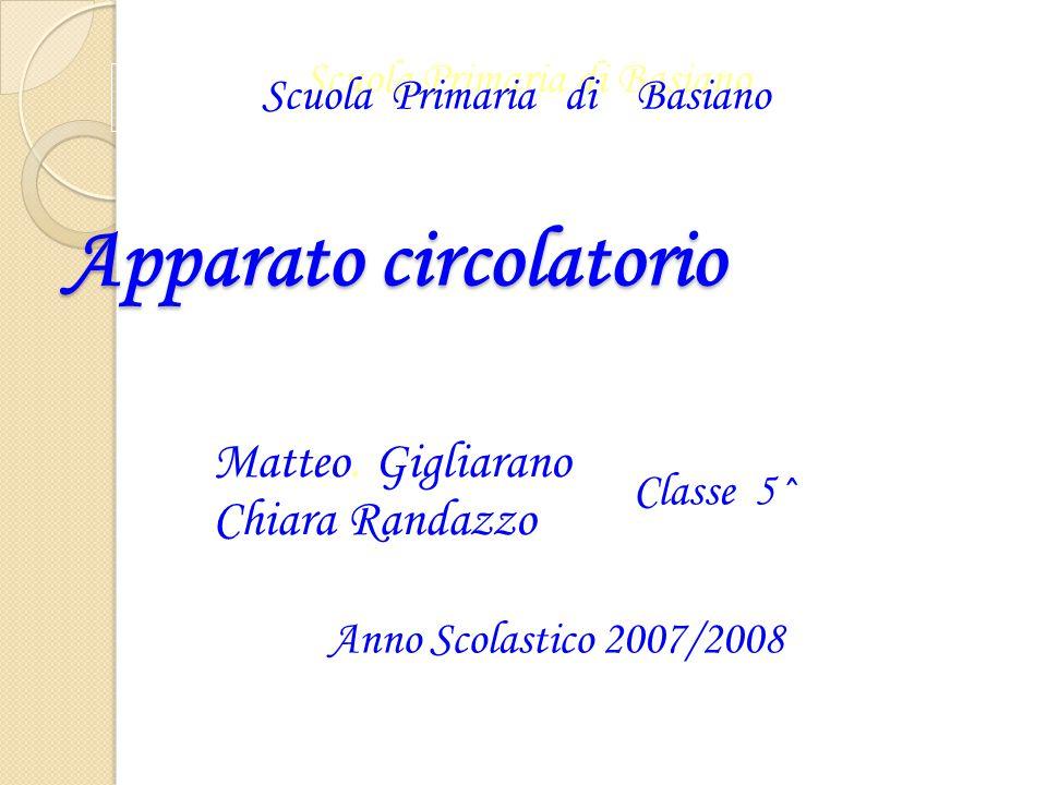 Apparato circolatorio Scuola Primaria di Basiano Matteo. Gigliarano Chiara Randazzo Anno Scolastico 2007/2008 Classe 5^ Scuola Primaria di Basiano