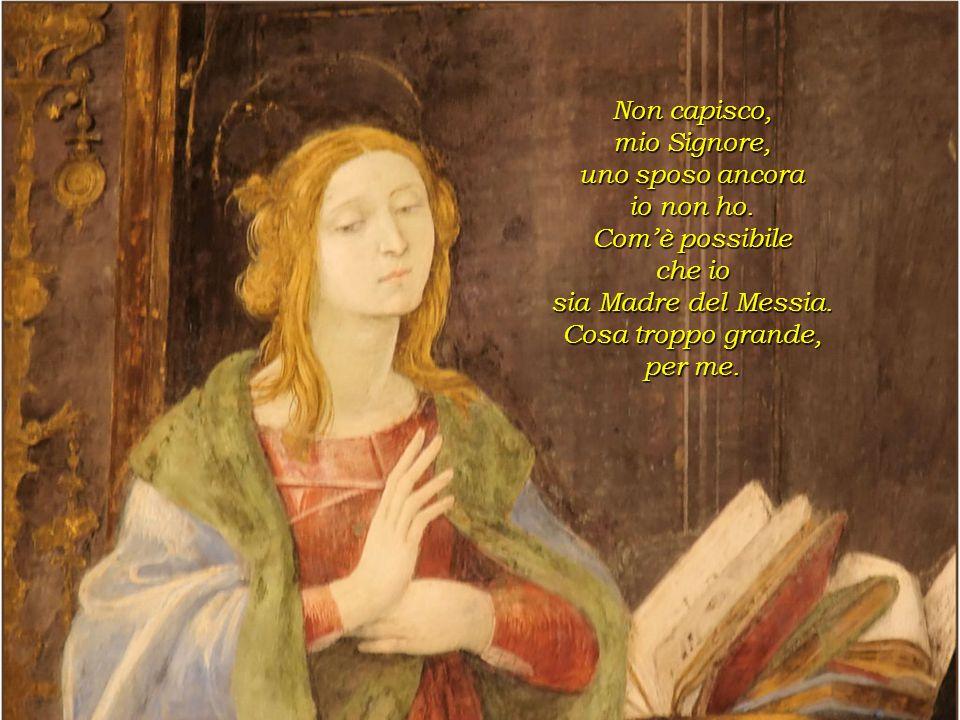 Ti saluto Maria, il Signore è con Te, Tu hai trovato grazia presso Dio, avrai un figlio, Egli sarà grande e Dio lo chiamerà suo figlio, lo farà re, ed