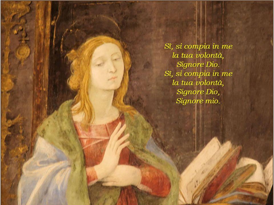 Dico sì alla tua Parola e il tuo Spirito m'invaderà. m'invaderà. Sarò la Madre del Messia, di chi ci salverà. Quale grande onore per me. per me.