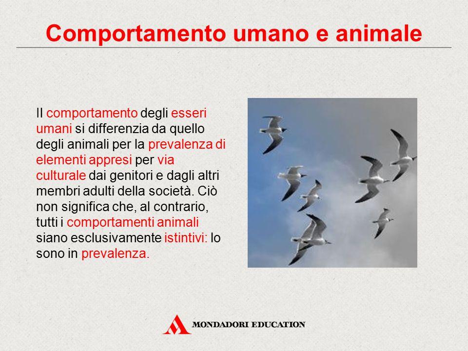 Comportamento umano e animale Il comportamento degli esseri umani si differenzia da quello degli animali per la prevalenza di elementi appresi per via