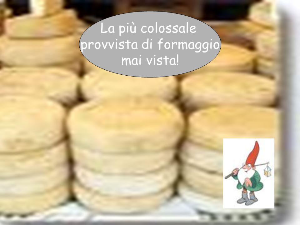 Giovanna Giuffredi La più colossale provvista di formaggio mai vista!