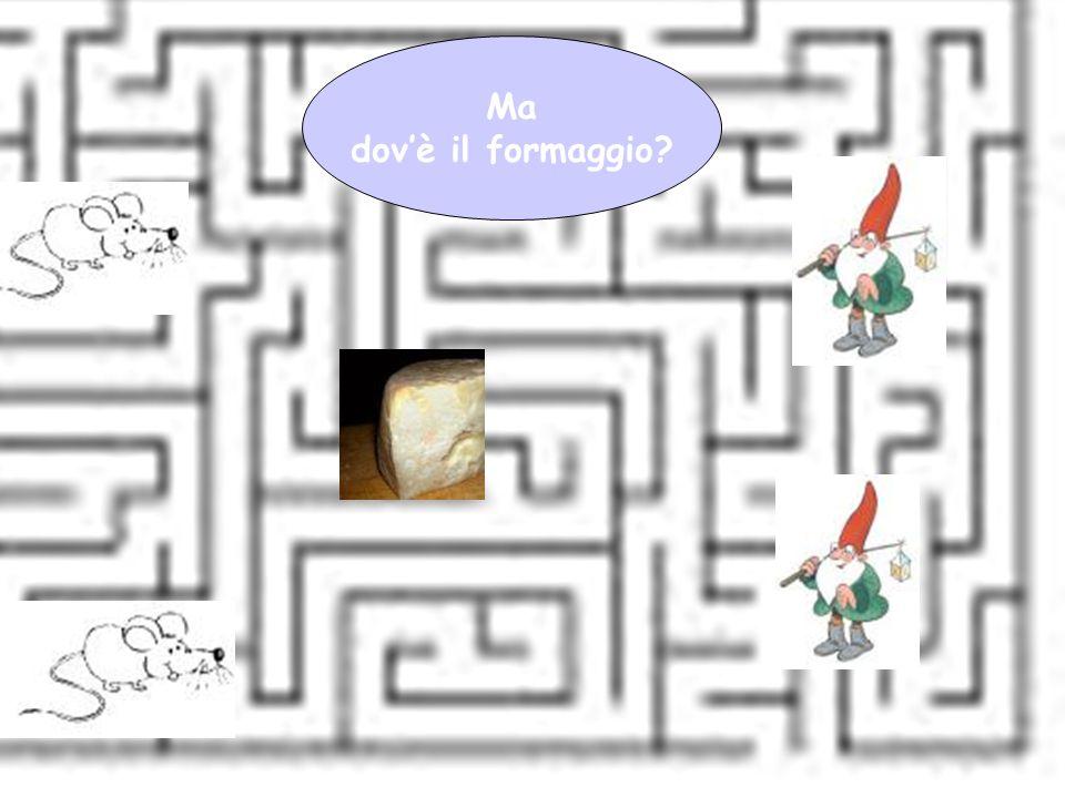 Giovanna Giuffredi Ma dov'è il formaggio