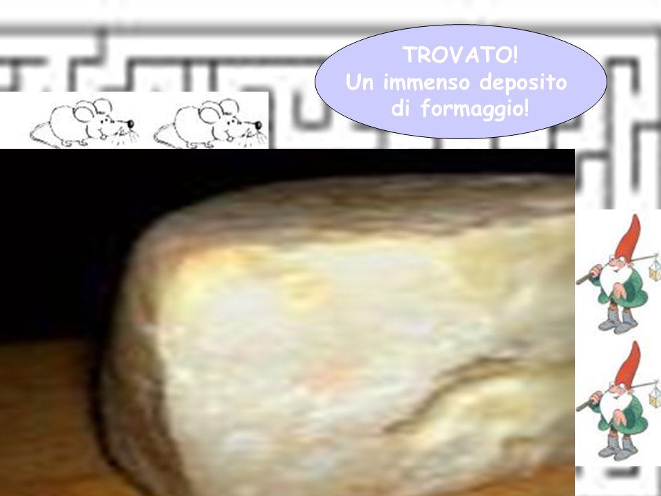 Giovanna Giuffredi TROVATO! Un immenso deposito di formaggio!