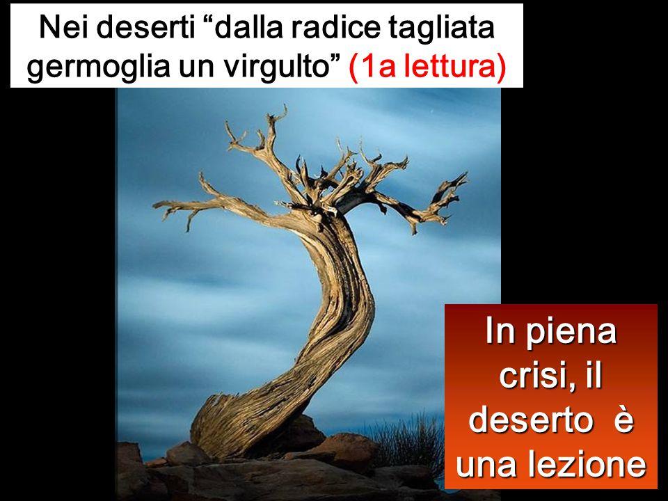 In piena crisi, il deserto è una lezione Nei deserti dalla radice tagliata germoglia un virgulto (1a lettura)
