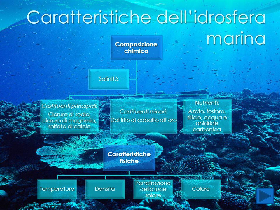 Caratteristiche dell'idrosfera marina Composizione chimica Costituenti principali: Cloruro di sodio, cloruro di magnesio, solfato di calcio Costituent