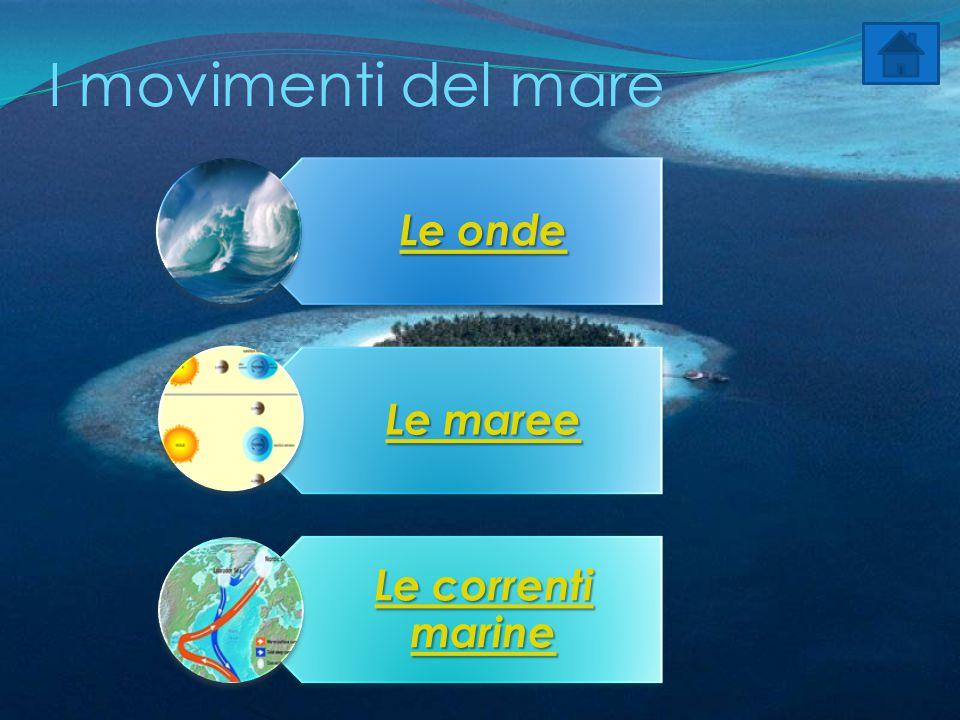 I movimenti del mare Le onde Le onde Le maree Le maree Le correnti marine Le correnti marine